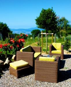 (09)Valdonica Winery&Vineyard Residence - Cantina Terrace